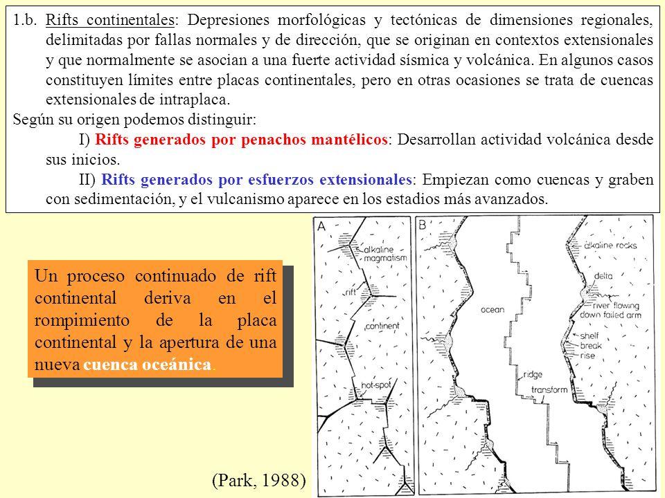 1.b. Rifts continentales: Depresiones morfológicas y tectónicas de dimensiones regionales, delimitadas por fallas normales y de dirección, que se originan en contextos extensionales y que normalmente se asocian a una fuerte actividad sísmica y volcánica. En algunos casos constituyen límites entre placas continentales, pero en otras ocasiones se trata de cuencas extensionales de intraplaca.