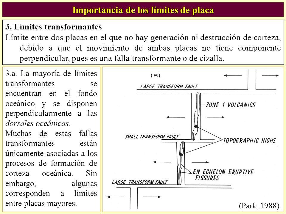Importancia de los límites de placa