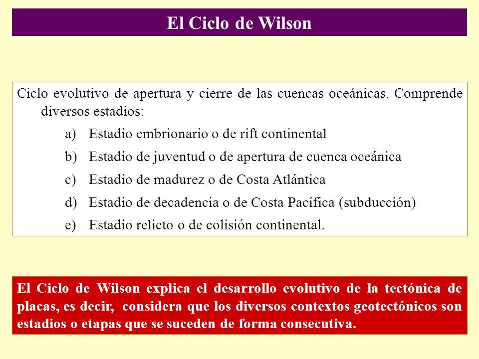 El Ciclo de Wilson Ciclo evolutivo de apertura y cierre de las cuencas oceánicas. Comprende diversos estadios: