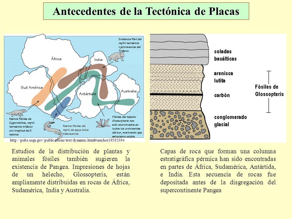 Antecedentes de la Tectónica de Placas