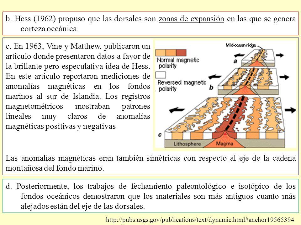 b. Hess (1962) propuso que las dorsales son zonas de expansión en las que se genera corteza oceánica.