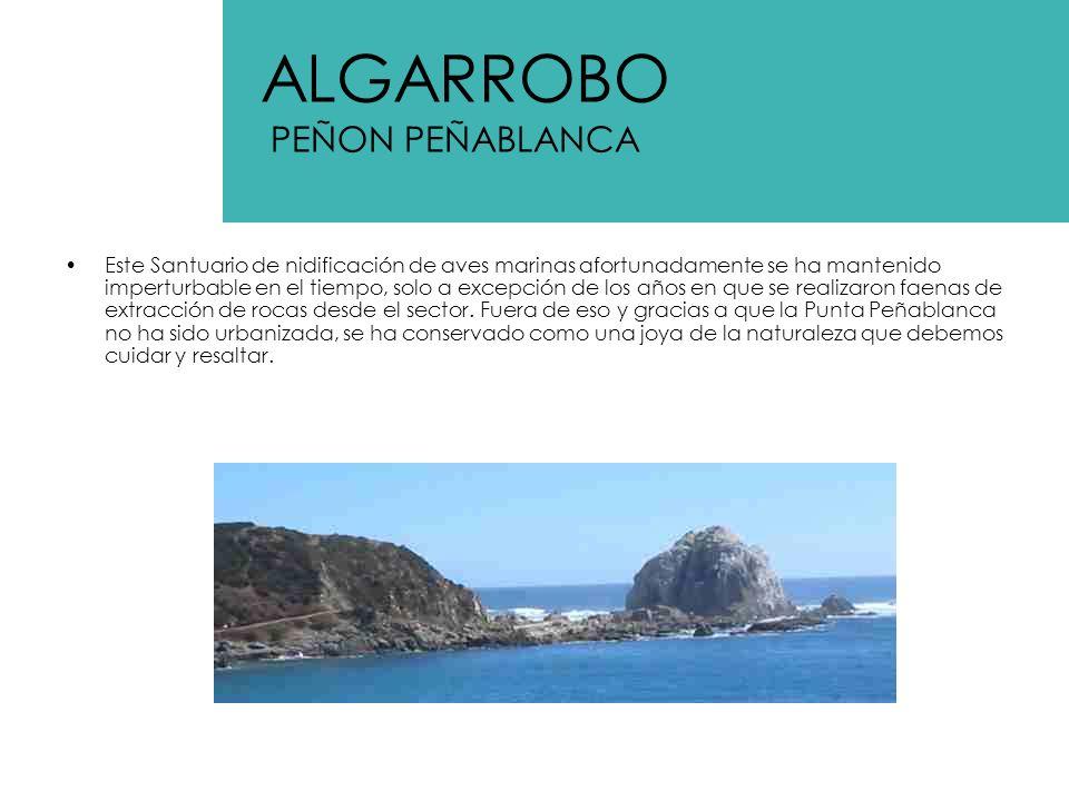 ALGARROBO PEÑON PEÑABLANCA