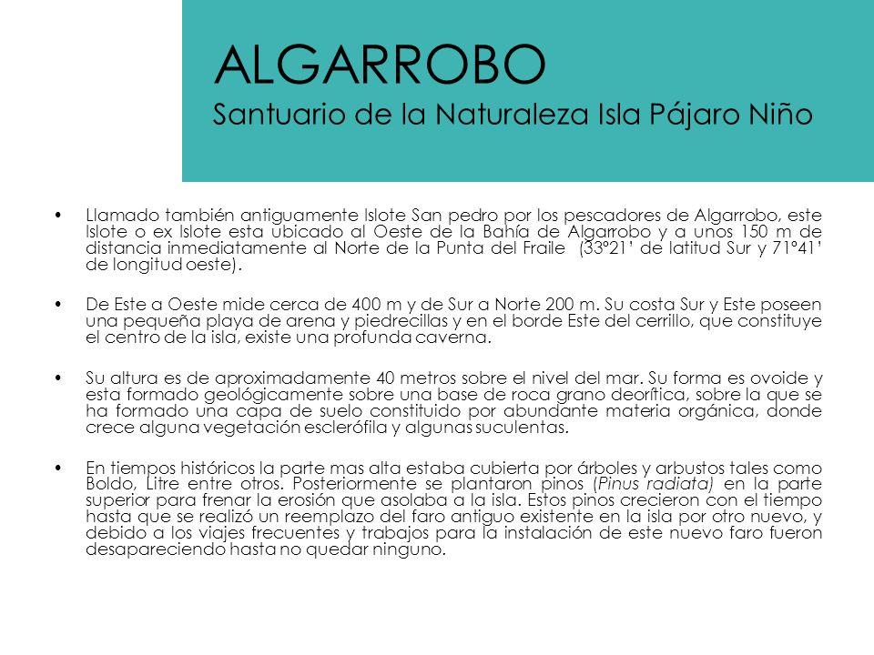 ALGARROBO Santuario de la Naturaleza Isla Pájaro Niño
