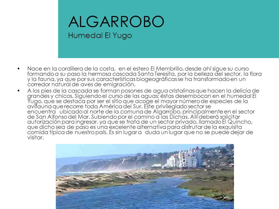ALGARROBO Humedal El Yugo