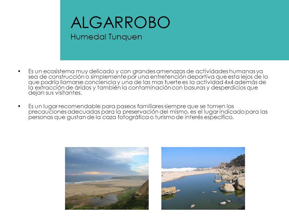 ALGARROBO Humedal Tunquen