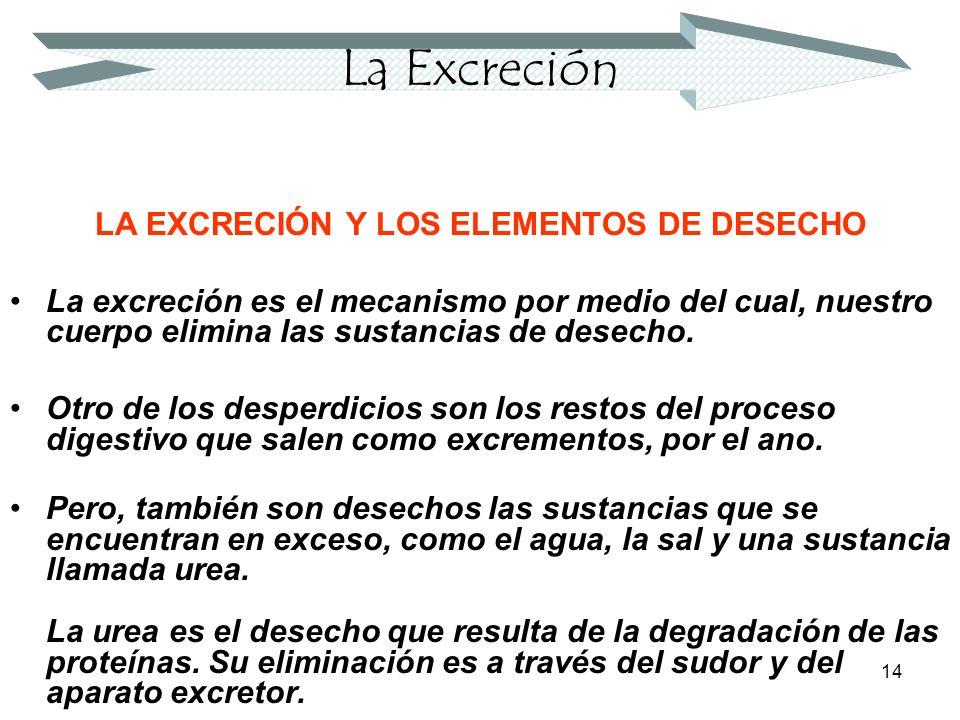 LA EXCRECIÓN Y LOS ELEMENTOS DE DESECHO