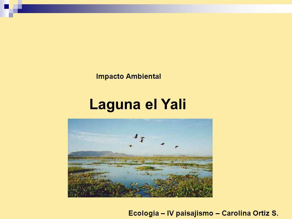 Laguna el Yali Impacto Ambiental