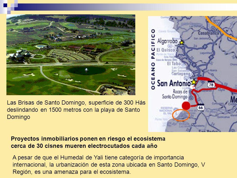 Las Brisas de Santo Domingo, superficie de 300 Hás