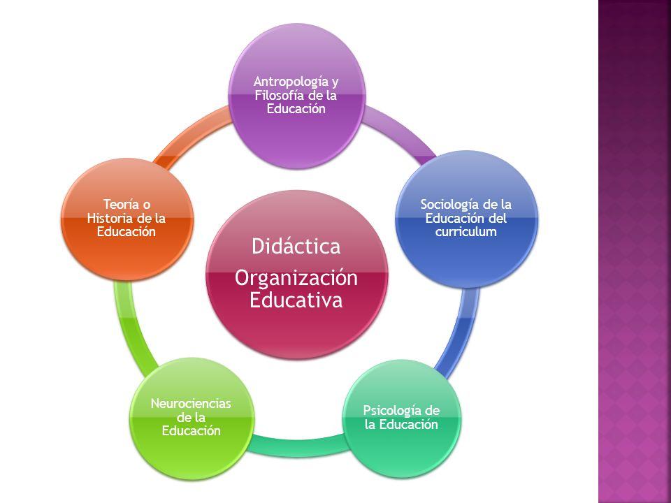 Organización Educativa Didáctica