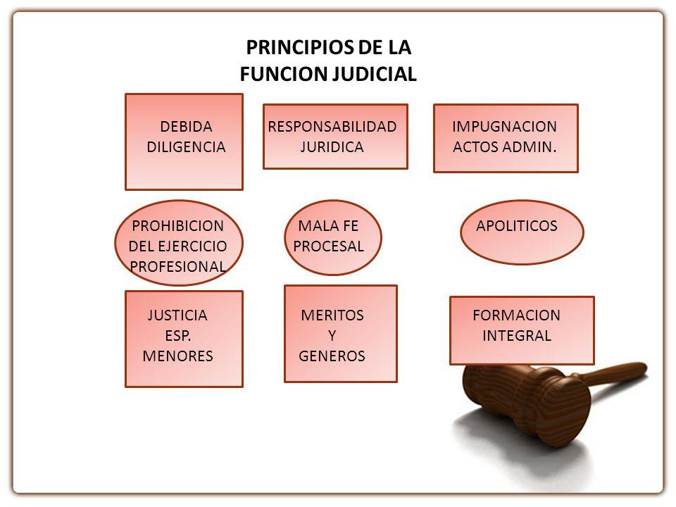 PRINCIPIOS DE LA FUNCION JUDICIAL