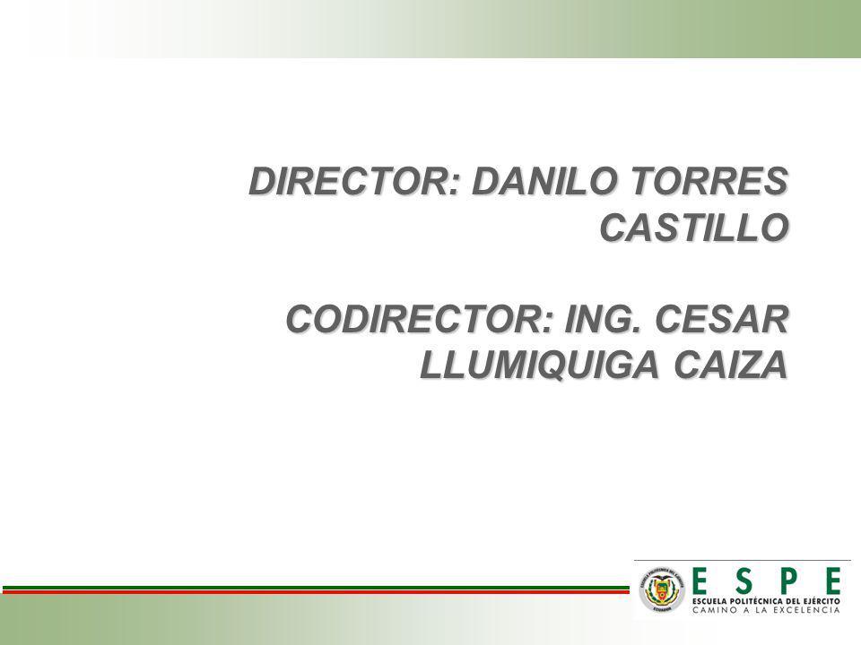 DIRECTOR: DANILO TORRES CASTILLO CODIRECTOR: ING
