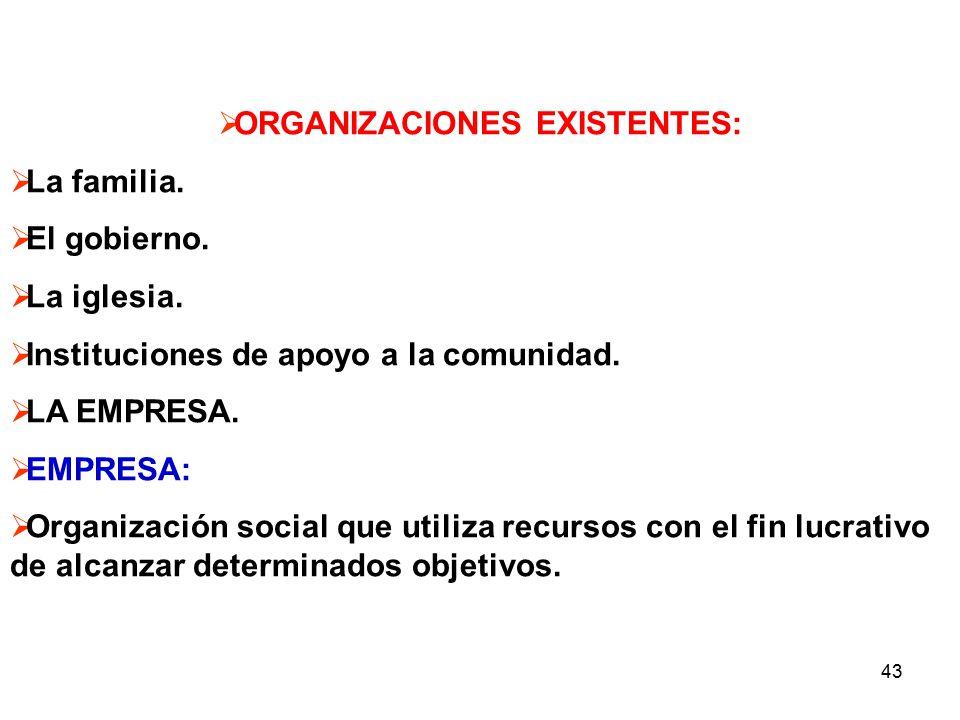 ORGANIZACIONES EXISTENTES: