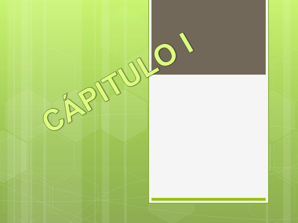 CÁPITULO I