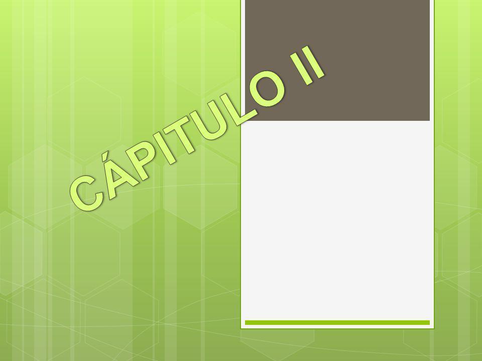 CÁPITULO II