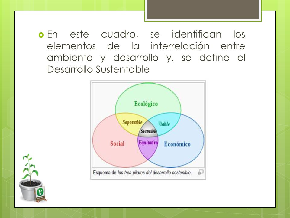 En este cuadro, se identifican los elementos de la interrelación entre ambiente y desarrollo y, se define el Desarrollo Sustentable