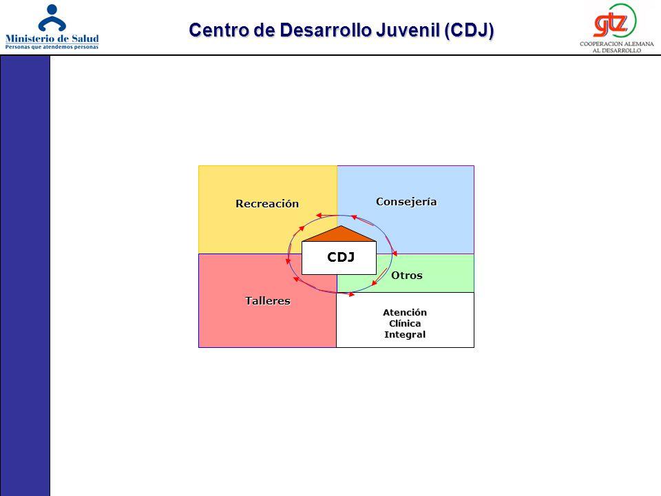 Centro de Desarrollo Juvenil (CDJ)