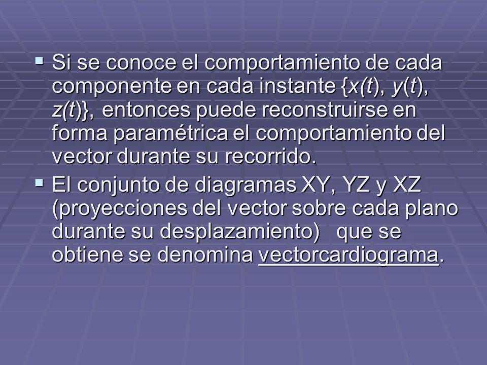 Si se conoce el comportamiento de cada componente en cada instante {x(t), y(t), z(t)}, entonces puede reconstruirse en forma paramétrica el comportamiento del vector durante su recorrido.