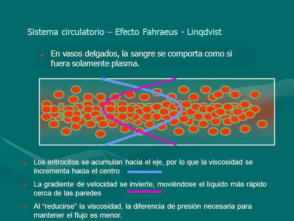 Sistema circulatorio – Efecto Fahraeus - Linqdvist