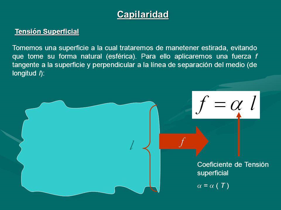 l f Capilaridad Tensión Superficial