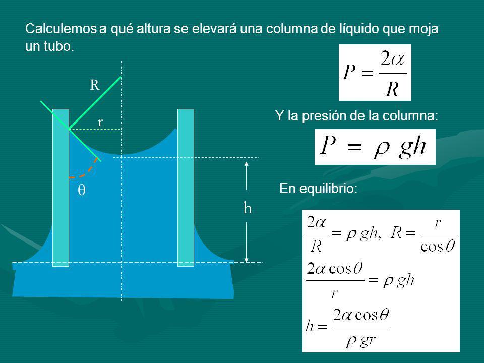 Calculemos a qué altura se elevará una columna de líquido que moja un tubo.