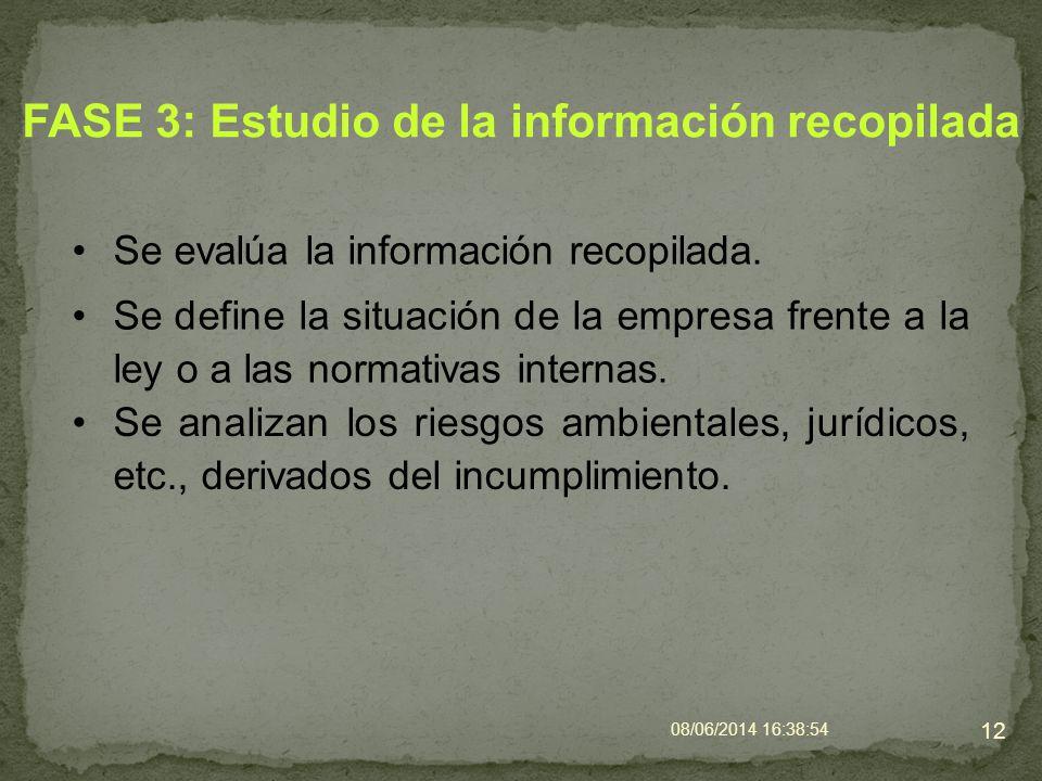 FASE 3: Estudio de la información recopilada