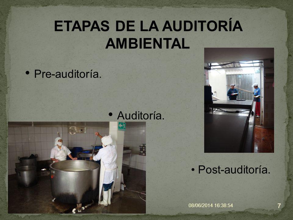 ETAPAS DE LA AUDITORÍA AMBIENTAL