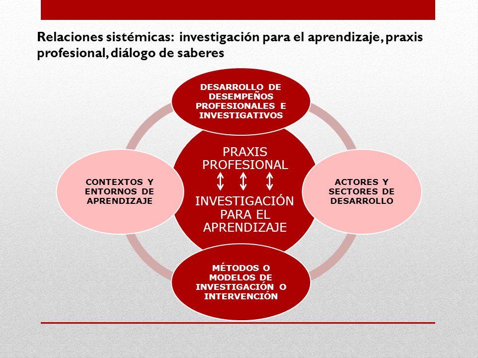 Relaciones sistémicas: investigación para el aprendizaje, praxis profesional, diálogo de saberes