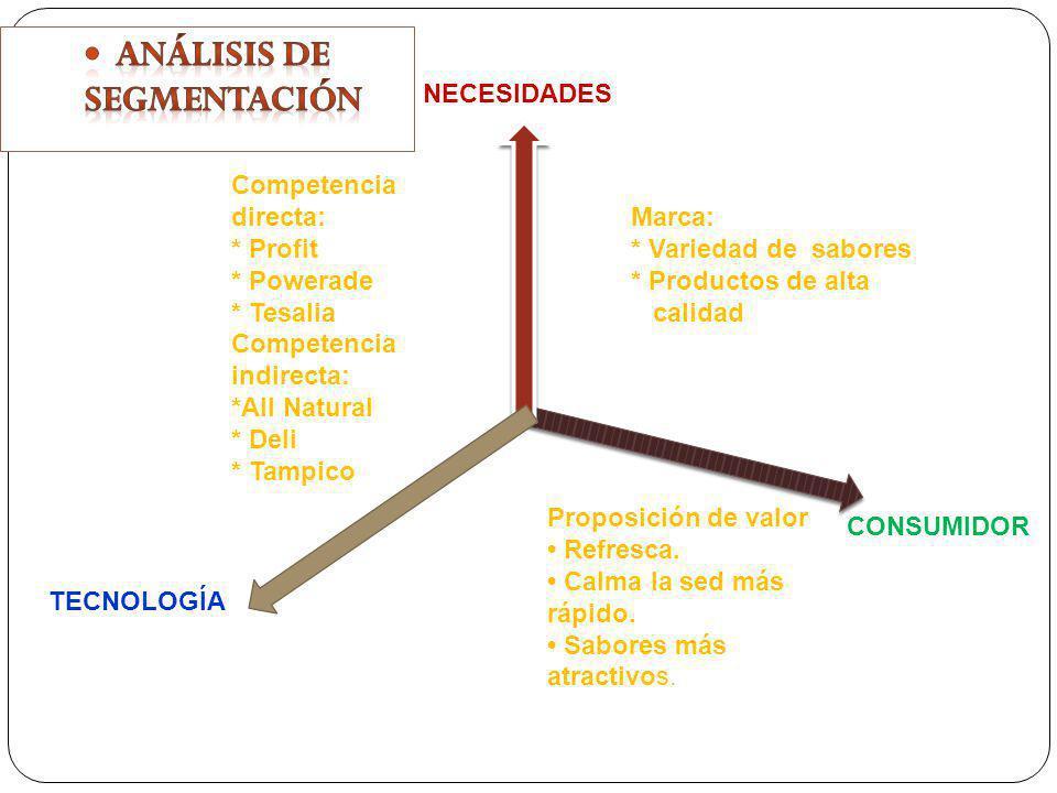 Análisis de segmentación