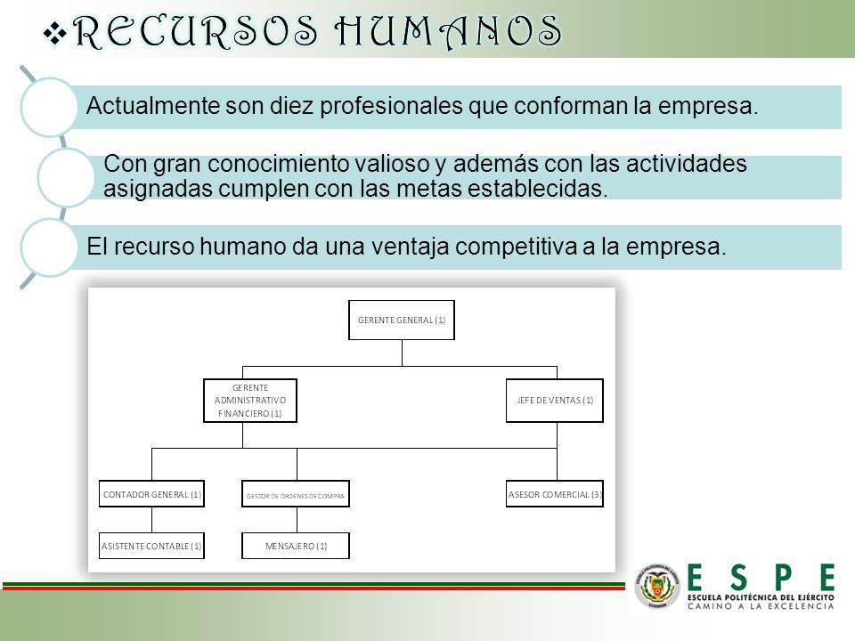 RECURSOS HUMANOS Actualmente son diez profesionales que conforman la empresa.