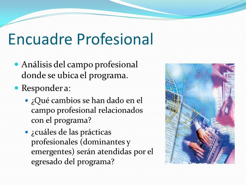 Encuadre Profesional Análisis del campo profesional donde se ubica el programa. Responder a: