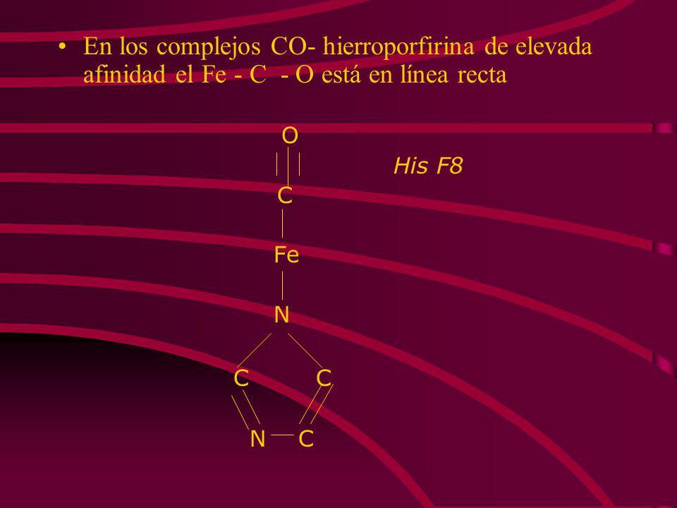 En los complejos CO- hierroporfirina de elevada afinidad el Fe - C - O está en línea recta