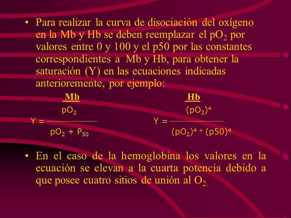 Para realizar la curva de disociación del oxígeno en la Mb y Hb se deben reemplazar el pO2 por valores entre 0 y 100 y el p50 por las constantes correspondientes a Mb y Hb, para obtener la saturación (Y) en las ecuaciones indicadas anterioremente, por ejemplo: