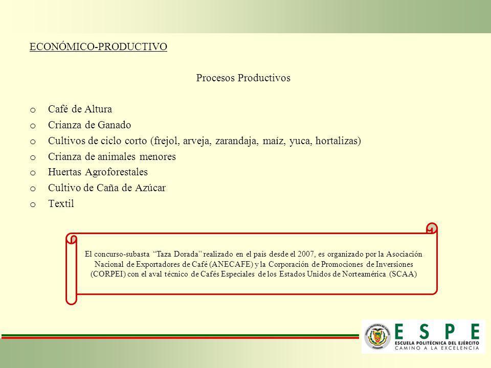 ECONÓMICO-PRODUCTIVO Procesos Productivos Café de Altura