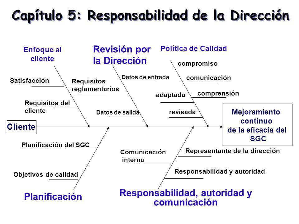 Capítulo 5: Responsabilidad de la Dirección