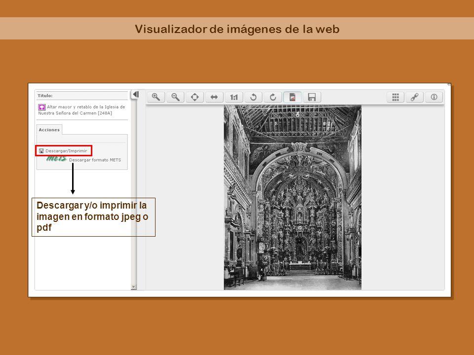 Visualizador de imágenes de la web