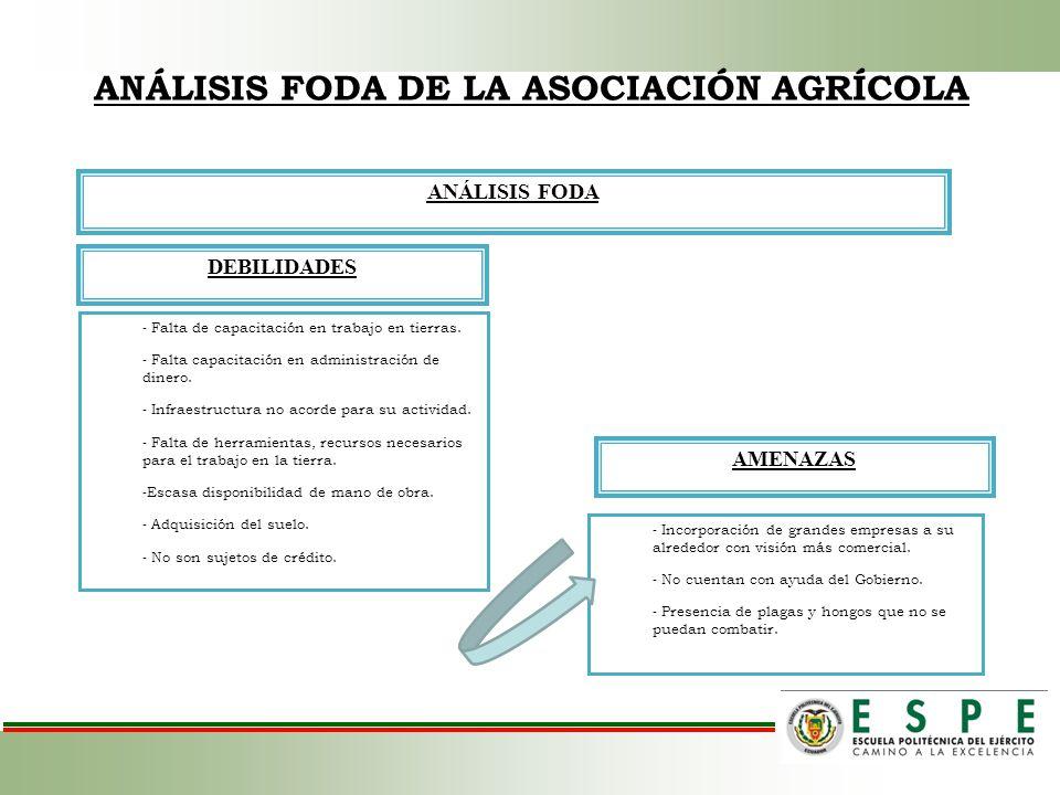 ANÁLISIS FODA DE LA ASOCIACIÓN AGRÍCOLA