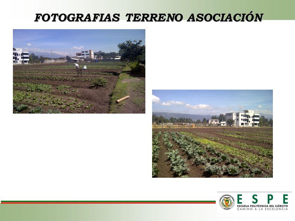 FOTOGRAFIAS TERRENO ASOCIACIÓN