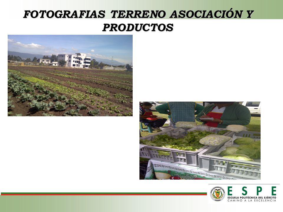 FOTOGRAFIAS TERRENO ASOCIACIÓN Y PRODUCTOS