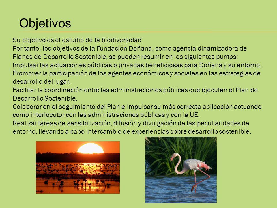 Objetivos Su objetivo es el estudio de la biodiversidad.