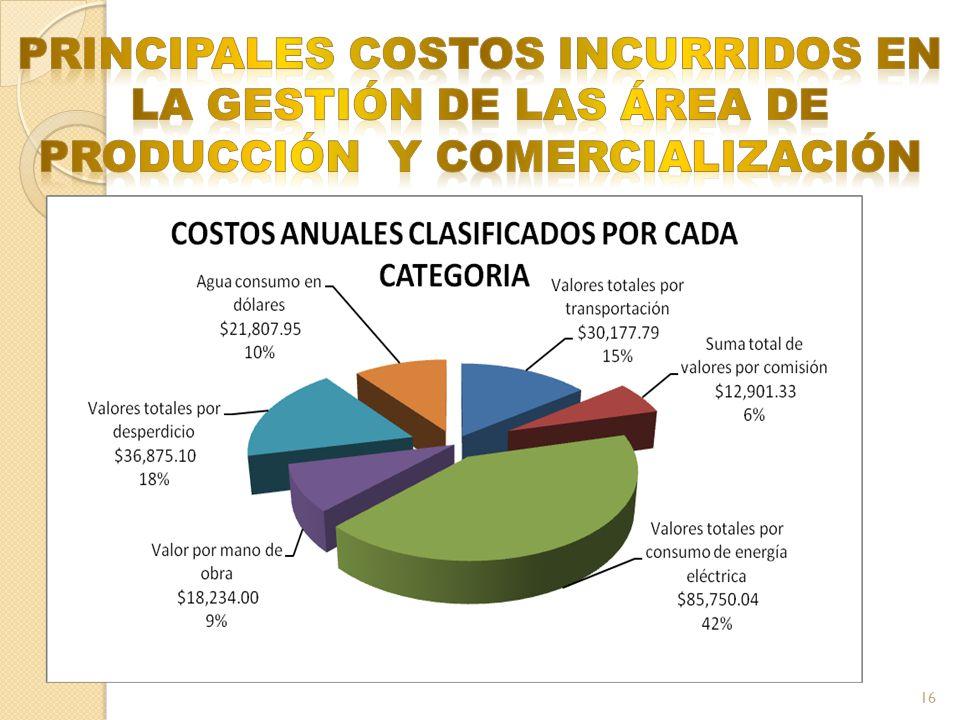 PRINCIPALES COSTOS INCURRIDOS EN LA GESTIÓN DE LAS ÁREA DE PRODUCCIÓN Y COMERCIALIZACIÓN