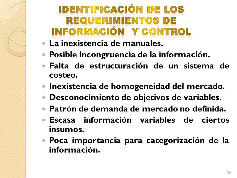 IDENTIFICACIÓN DE LOS REQUERIMIENTOS DE INFORMACIÓN Y CONTROL