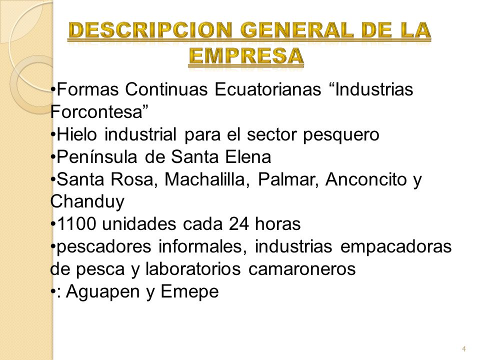 descripcion general de la empresa