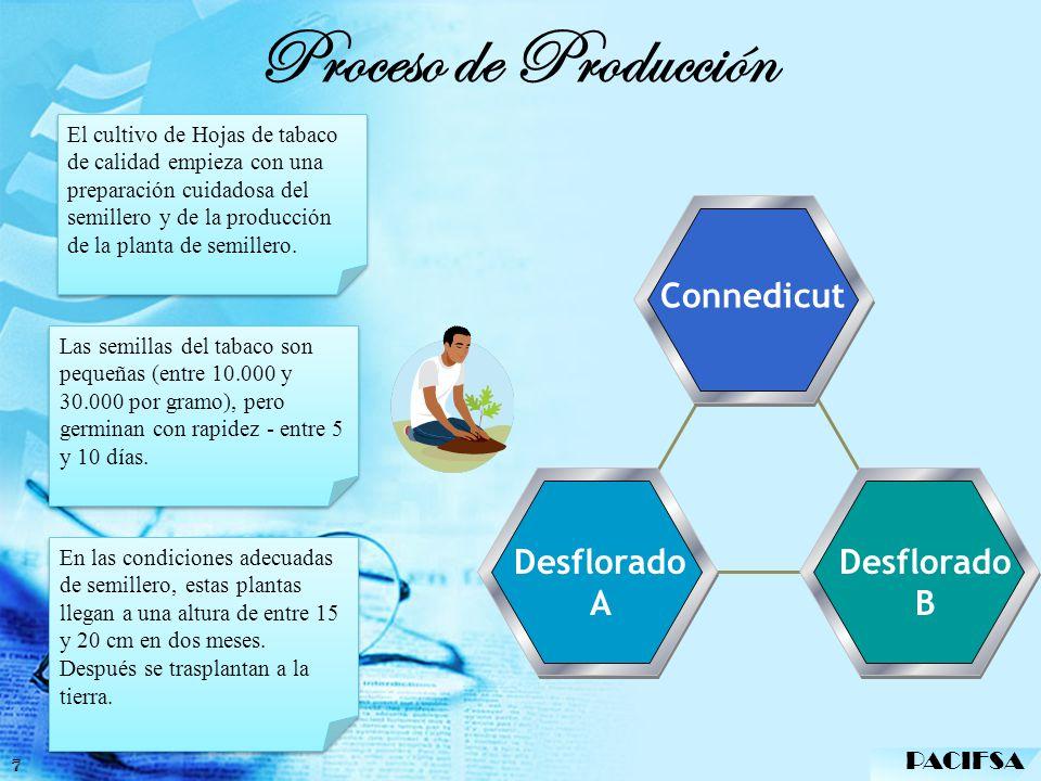 Proceso de Producción Connedicut Desflorado A Desflorado B PACIFSA