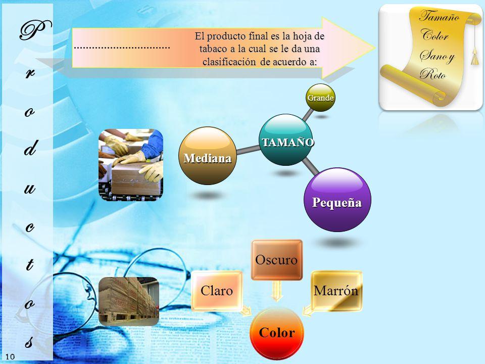 Productos Tamaño Color Sano y Roto Pequeña Mediana TAMAÑO