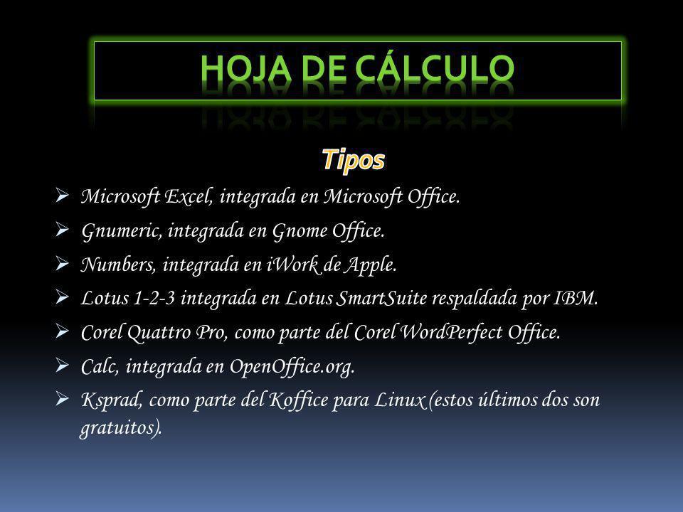 Hoja de Cálculo Tipos Microsoft Excel, integrada en Microsoft Office.