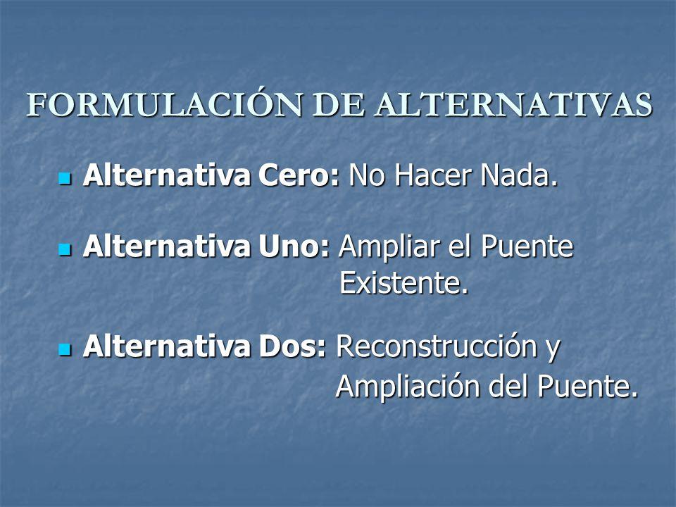FORMULACIÓN DE ALTERNATIVAS