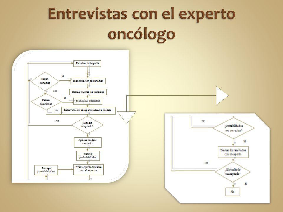 Entrevistas con el experto oncólogo