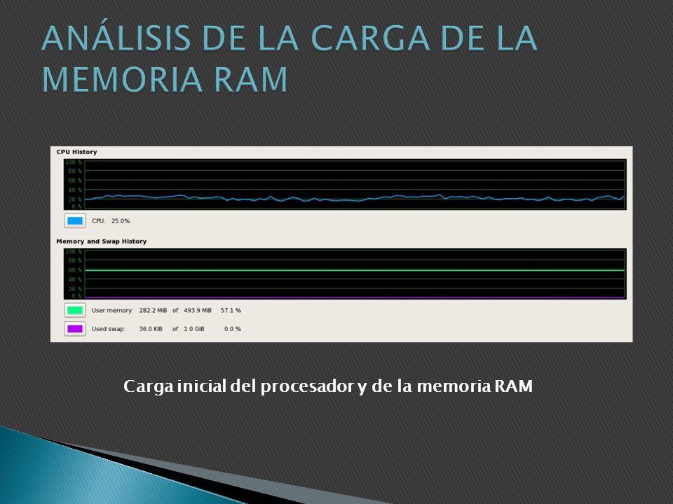 ANÁLISIS DE LA CARGA DE LA MEMORIA RAM