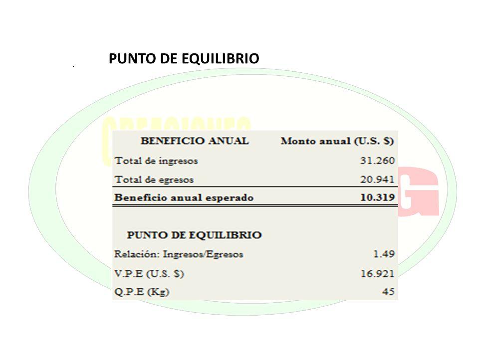. PUNTO DE EQUILIBRIO