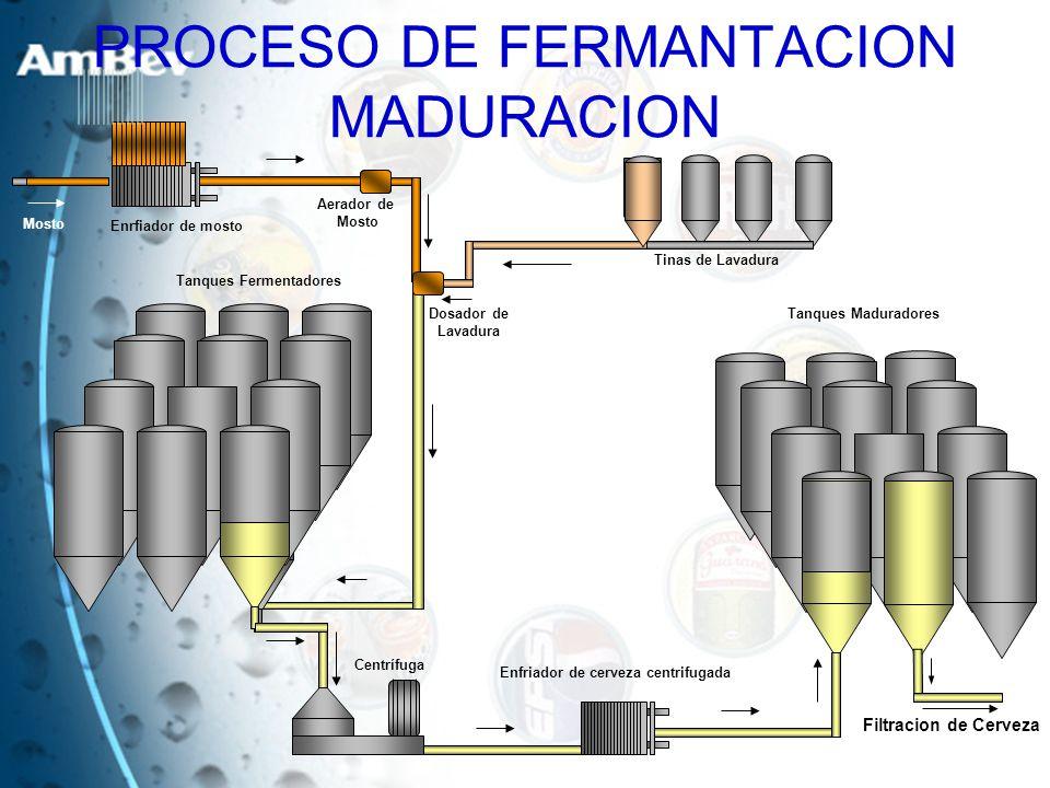 PROCESO DE FERMANTACION MADURACION
